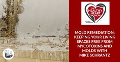 Mold Remediation: Keeping Your Living Spaces Free From Mycotoxins And Molds With Mike Schrantz Mold Exposure, Air Conditioning System, Indoor Air Quality, Stress Management, Ecology, Living Spaces, Environment, Free, Environmental Science