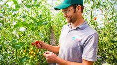 Bayberry Fresh is a local farm near Fort Collins, Colorado. Haydn Christensen…