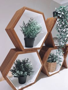 Custom made Terrarium, Floating Shelves, Style Inspiration, House Styles, Home Decor, Terrariums, Wall Mounted Shelves, Interior Design, Wall Shelves