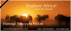 Lots Of Africa Tour Packages | Flamingo Travels
