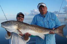 Indian River Lagoon, Little Fish, September 2013, Second Best, Coast, Google