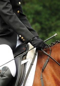 Increase Your Horse's Responsiveness to Your Aids