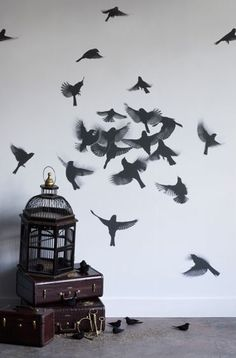Stencil of birds on wall next to open cage .