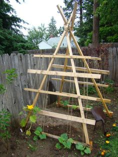 Squash trellis this is the must have for my garden this year