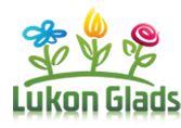 Logo katalog květin a trav Lukon Glads. Gladioli, Logo, Plants, Lily, Logos, Planters, Plant