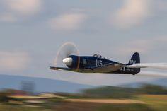 Hawker Sea Fury | Flickr - Photo Sharing!