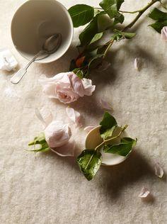 Still Life- Pamela Duncan Silver