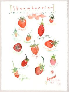 Strawberries, Original watercolor painting, Kitchen decor, Fruit, Red, 11X14, Food art