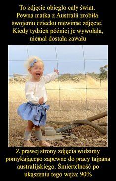 To zdjęcie obiegło cały świat! Pewna matka z Australii zrobiła swojemu... Stupid People, Einstein, Everything, Fun Facts, Funny Memes, Lol, Entertaining, Humor, My Love
