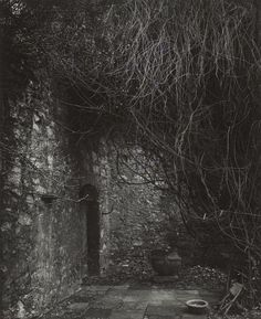 Josef Sudek. A Walk in the Garden of the Lady Sculptor 1957