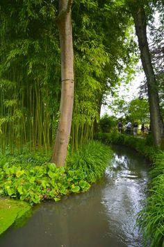 Claude Monet Garden Visit Giverny33