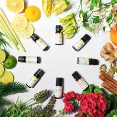 Simply add a few drops of pure essential oils blends to your aroma diffuser to release a stream of pure, unadulterated all-natural fragrance. Aroma Diffuser, Diffuser Blends, Oil Diffuser, Essential Oil Candles, Pure Essential Oils, Natural Candles, Soy Candles, Room Scents, Fragrance