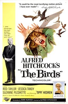 The Birds (1963) A wealthy San Francisco socialite pursues a potential boyfriend to a small Northern California town that slowly takes a turn for the bizarre when birds of all kinds suddenly begin to attack people. Jessica Tandy, Horror Movie Posters, Horror Films, Tippi Hedren, The Birds Movie, Terrifying Movies, Scary Movies, Alfred Hitchcock The Birds, Suzanne Pleshette
