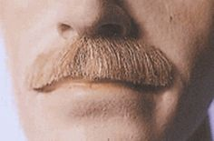Rooster disguise mustache in black: BMG04 <br>Fake Mustache <br>The Diplomat <br>100% Human Hair <br> Glue On