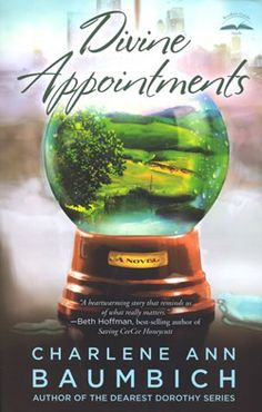 divine appointments by charlene ann baumbich