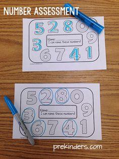 Number Assessment Pre-K Printable Numbers Kindergarten, Numbers Preschool, Pre Kindergarten, Preschool Printables, Preschool Activities, Preschool Assessment, Preschool Education, Letter Assessment, Preschool Portfolio