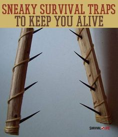 Sneaky Survival Snare Traps To Keep You Alive - Survival Life | Preppers | Survival Gear | Blog http://www.knifefolks.com/pocket-knife-comparison-chart/ https://www.facebook.com/PreppingMeansPrepared/ #survivaltraps