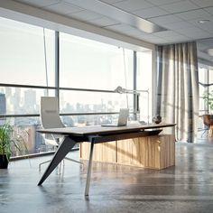Stealth - Executive desk - Dymitr Malcew