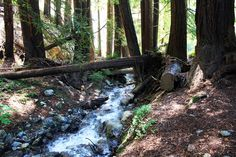 What to do in Big Sur: Watefalls, Hiking, Beaches & Parks | California Through My Lens