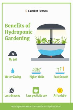 Benefits of Hydroponic Gardening | Hydroponic gardening is an excellent alternative if you don't have access to a gardening space and healthy gardening soil. In addition, there is a wide range of crops that can be grown hydroponically.  However, it's still best to know the right crops and varieties of plants that can be grown healthily and successfully in hydroponic gardening.