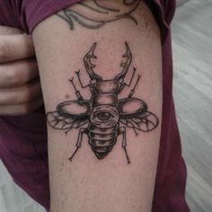 What does beetle tattoo mean? We have beetle tattoo ideas, designs, symbolism and we explain the meaning behind the tattoo. Beetle Tattoo, Insect Tattoo, Insects, Ink, Tattoos, Design, Ideas, Beetle, Blanco Y Negro