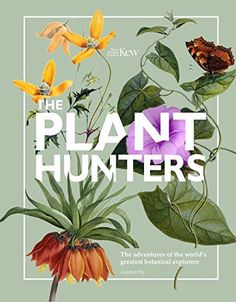 The Plant Hunters (Royal Botanical Gardens Kew) by Carolyn Fry - Welbeck Publishing Group - ISBN 10 0233005161 - ISBN 13 0233005161 - The…
