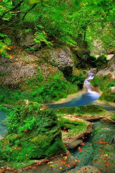 """Podrás disfrutar de numerosas cascadas como La Cascada del Elefante y la Cascada del Tubo  La excursión al Paraíso del Agua, """"El Nacedero el Río Urederra"""" es una ruta que  se realiza por todo un terreno boscoso y que tiene una belleza especial, como vemos en esta preciosa fotografía.    http://nacedero-rio-urederra.blogspot.com.es    http://www.casaruralnavarra-urbasaurederra.com/"""