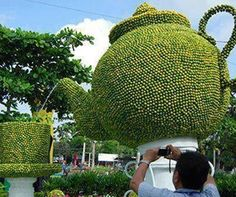 TIME FOR TEA, TOPIARY ART! www.teacampaign.ca Source: see below.                                                                                                                                                                                 More