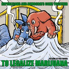 Can Republicans and Democrats come together to protect States' right to legalize Medical Marijuana?