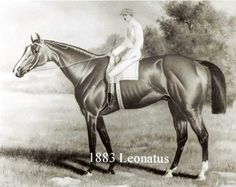 Leonatus. 1883 Kentucky Derby winner. Jockey: Billy Donohue. Winning time: 2:43:00
