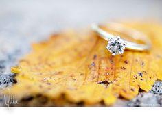fall wedding--cute pic to hang up