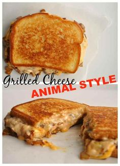 7 Grilled Cheese Animal Style21+ Grilled Cheese  Sandwiches that your family will go CRAZY for!
