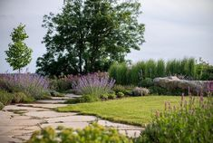 Zahrada zvlněná | Atelier Flera Landscape Architecture, Landscape Design, Boxwood Garden, Good Morning Flowers, Sidewalk, Country Roads, Nature, Plants, Instagram
