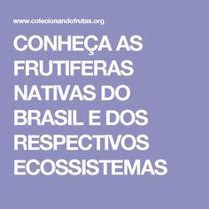 CONHEÇA AS FRUTIFERAS NATIVAS DO BRASIL E DOS RESPECTIVOS ECOSSISTEMAS