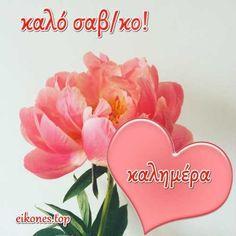 Καλημέρα,καλό Σαβ/κο! - eikones top Morning Coffee Images, Good Morning Good Night, Floral, Wedding Breakfast Images, Flowers, Flower