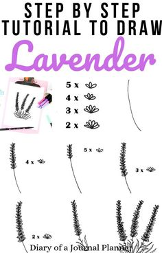 Lavender Drawing - 7 Easy Steps To A Perfect Lavender Doodle This is the easiest step by step guide Bullet Journal Ideas Pages, Bullet Journal Inspiration, Journal Pages, Easy Doodle Art, Doodle Doodle, Doodle Fonts, Lavender Quotes, Doodle For Beginners, Bujo Doodles