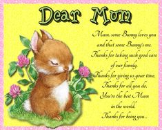 Gorgeous card for a special mum on Mother's Day or any occasion. Free online Mum, Some Bunny Loves You ecards on Mother's Day Mother Day Wishes, Happy Mothers Day, Big Hugs For You, Some Bunny Loves You, Love Hug, Mum Birthday, Flower Quotes, Love You Mom, Feeling Special