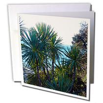 3dRose - Jos Fauxtographee Realistic - Palm Trees Near the Ocean in New Zealands Ohope Beach - Greeting Cards