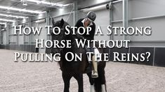 How To Stop A Strong Horse Without Pulling The Reins - Dressage Mastery TV Ep 151 - YouTube