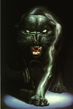 black panther animal | Black-Panther-Art-Animal- uploaded by seadragon on Friday, February 15 ...