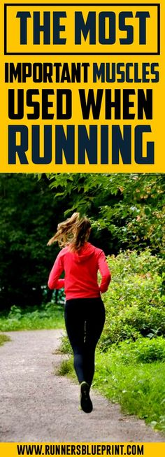 The Most Important Muscles Used When Running — Runners Blueprint Fit Board Workouts, Running Workouts, Running Training, Running Tips, Fun Workouts, Running Motivation, Fitness Motivation, Motivation Quotes, Running Muscles