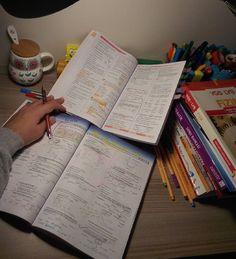 Work and study hard