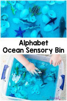 Alphabet Ocean Sensory Bin for fun Summer learning activity with kids