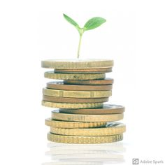 Did you learn about managing money when you were at school? This week I was running my Budgeting… Managing Your Money, Money Management, Budgeting, Decorative Boxes, Mary, Place Card Holders, Running, Learning, School
