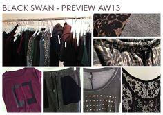 Black swan AW-13