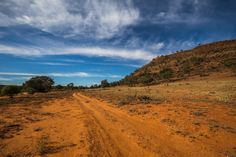 Sometimes in life you have to take the road less traveled. An outback track, far western New South Wales, Australia.
