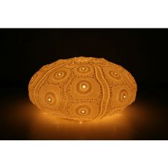 Urchin Lamp | Lighting | Seaweed and Sand Friend for starry