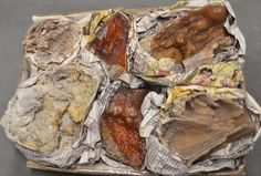 6 Pc Fossilized Coral Specimen Half Flat Withlacoochee River Florida
