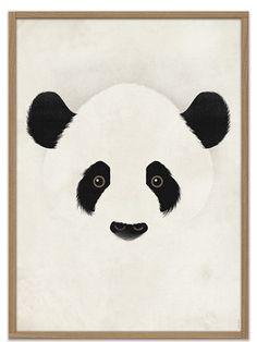 Giant Panda Poster (50x70cm)