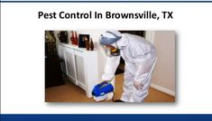 Pest Control Brownsville TX - Contact At  (956) 543-9014